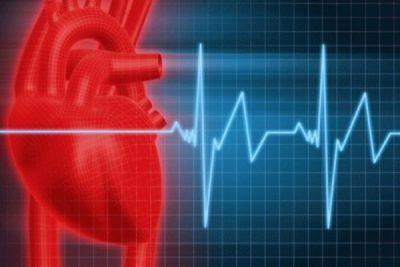 частота сердечных сокращений