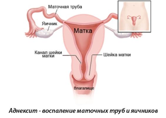 http://tutbolinet.ru/wp-content/uploads/2016/06/admin-ajax-50.jpg