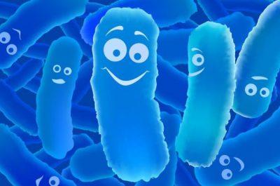 Полезные бактерии