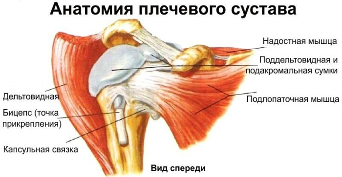 Болезнь плечевого сустава