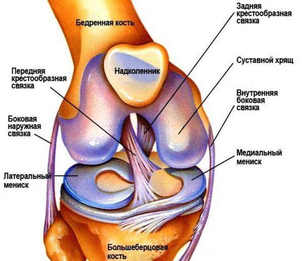 После тренировки болят коленные суставы что делать